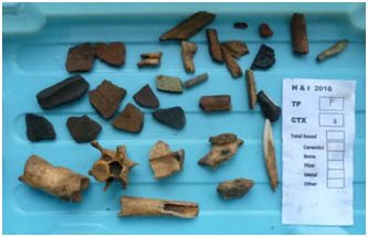 Histon Archaeology Project collection of finds